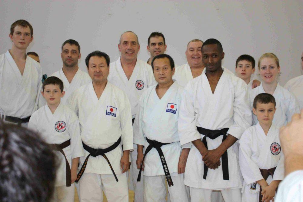 Mixed Level Karate