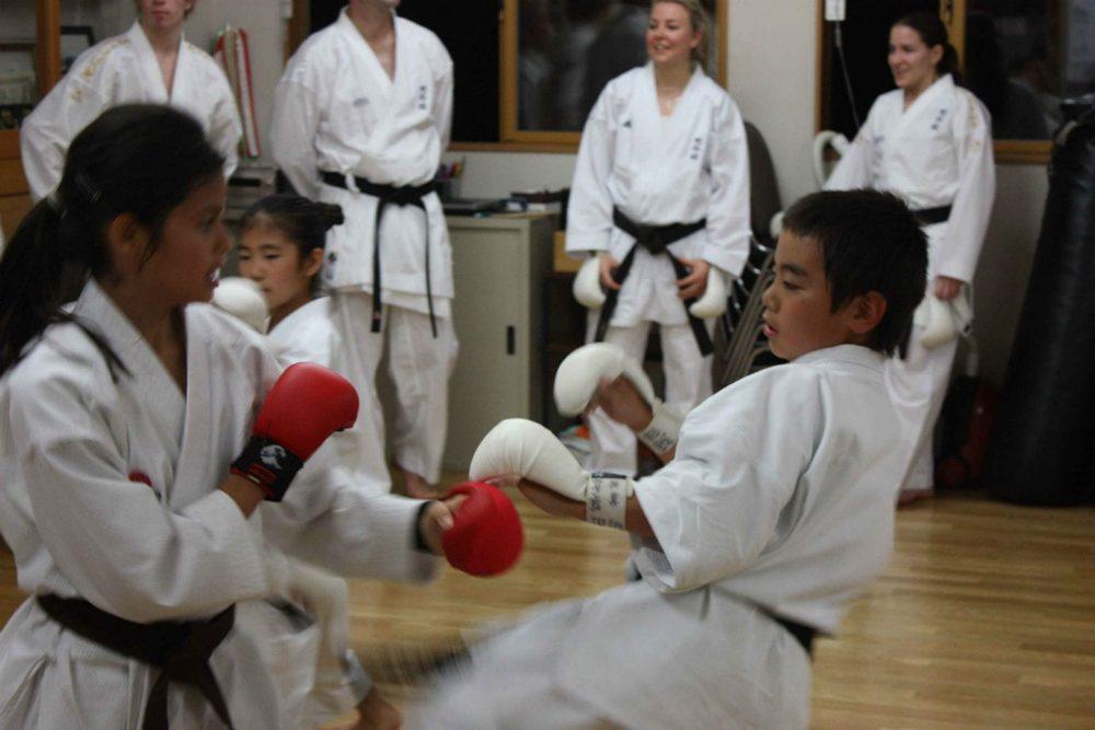Childrens Karate Wallingford