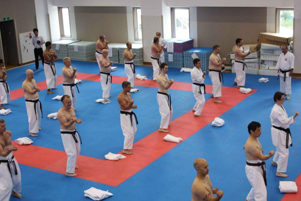 Adult Karate Didcot